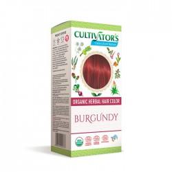 Örthårfärg Burgundy 100g EKO